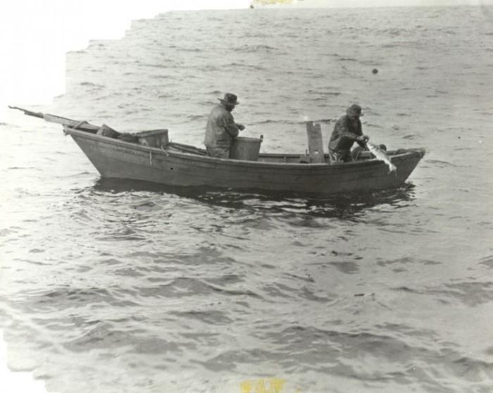 Hauling Trawl