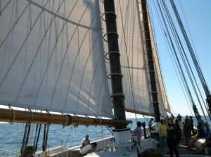 All 4 sails up