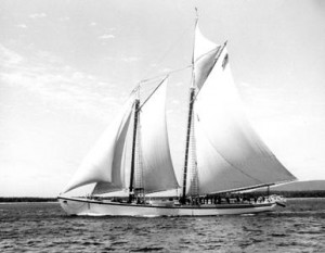Adv-windjammer