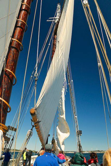 Sails are flying!