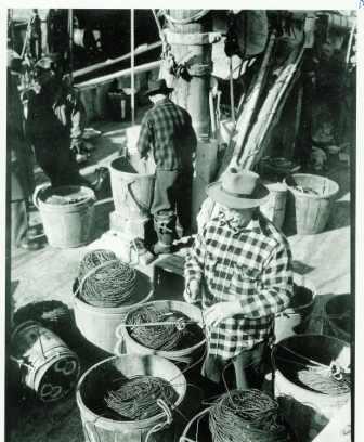 trawl lines
